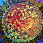 Abstract Sunflower Ten  Modern Abstract Fish Art Artwork Paintings J Vincent Scarpace