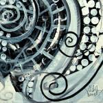 0081_barnacledblackwhite_det3