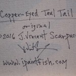 0090_coppereyedtealtail_det4c