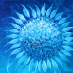 0045_cornflowerbymoonlight_det1