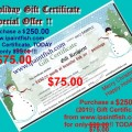 VERY SPECIAL OFFERING … FOR ONE DAY ONLY: BUY a $250.00 Gift Certificate for only $75.00!!