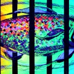 0014_jailfish_135826_blacklight_use